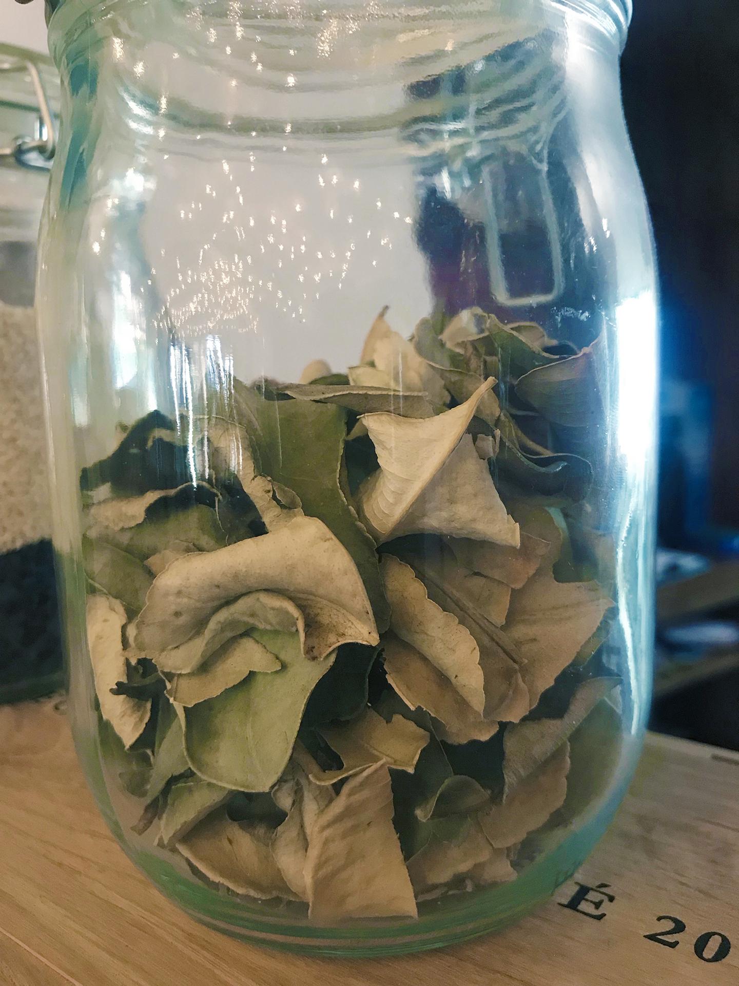 kaffir foglie essicate